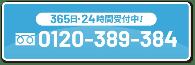 0120-389-384