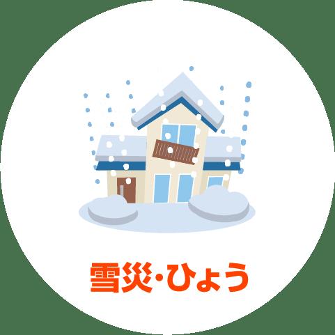 雪災・ひょう