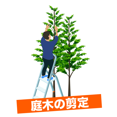 庭木のの剪定